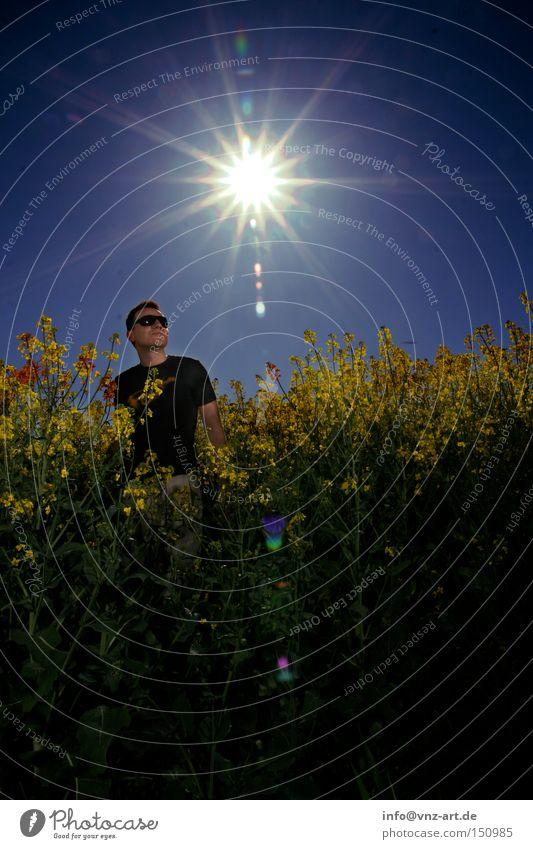 Man Sun Blue Summer Yellow Field Sunglasses Exposure Canola Canola field