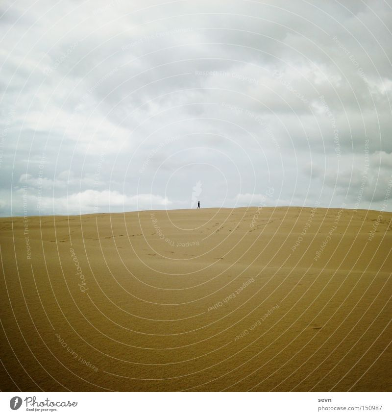 Sky Clouds Far-off places Yellow Playing Sand Small Waves Hiking Large Desert Beach dune Dune Australia Grain of sand