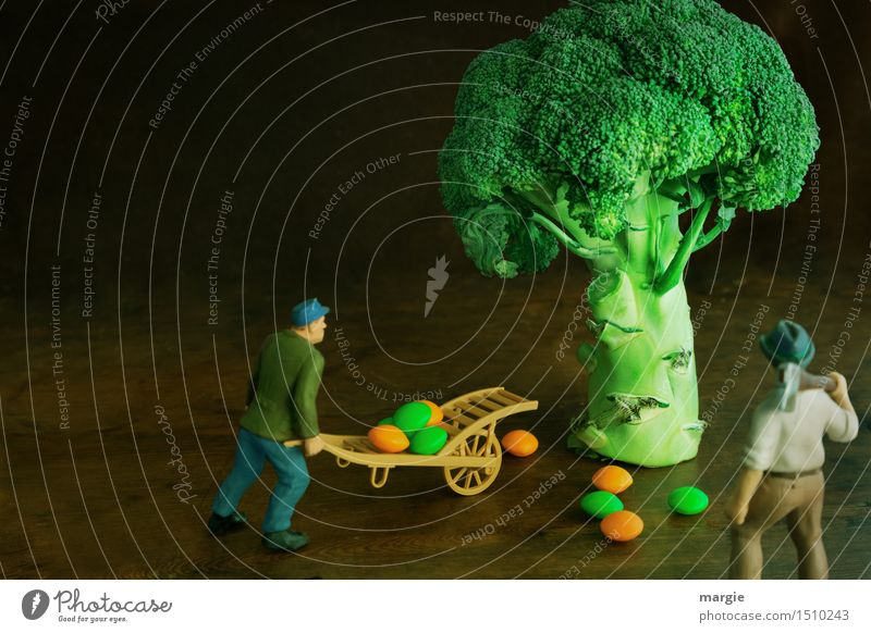 Miniwelten - Broccoli Harvest Vegetable Organic produce Vegetarian diet Work and employment Gardening Workplace Kitchen Agriculture Forestry Human being
