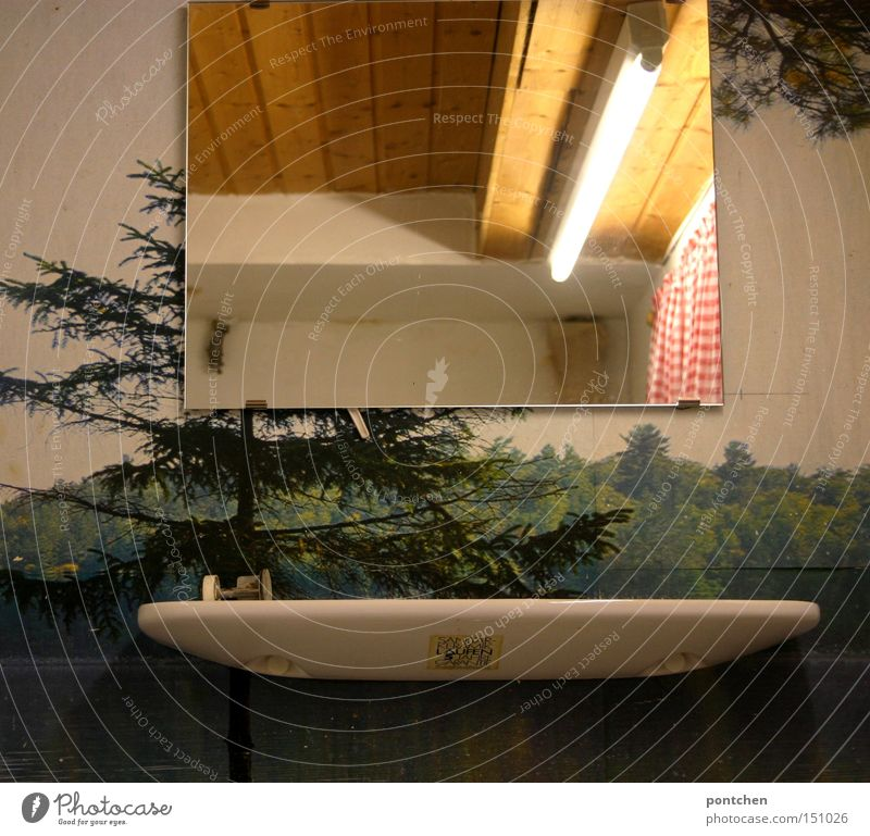 Mirror and soap dish in a dark bathroom with wallpaper with a forest motif. neon tube and wood panelling Living or residing Arrange Interior design Wallpaper