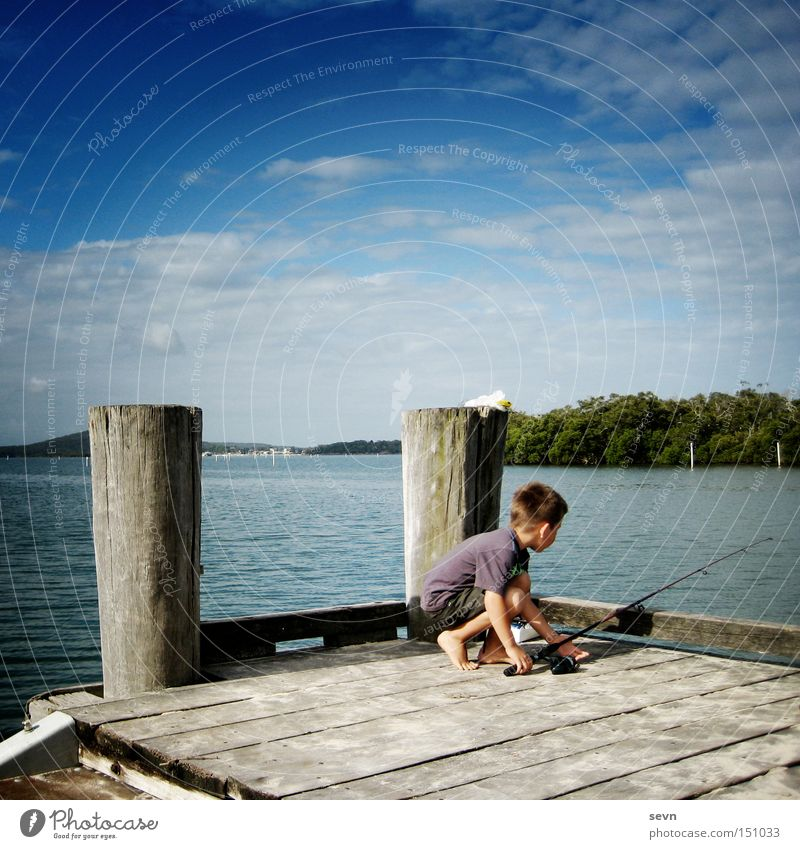 fish Fishing (Angle) River Lake Wood Boy (child) Water Clouds Footbridge Child Action Australia Summer