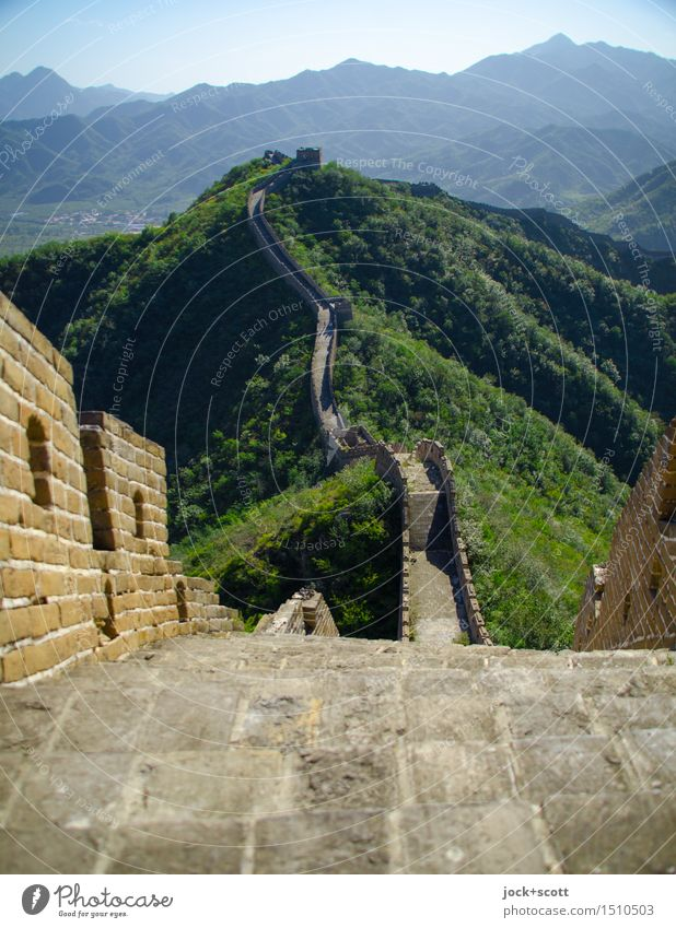 Long long wall forwards Far-off places Cinese architecture World heritage Animal Cloudless sky Summer Beautiful weather Mountain Beijing Wall (barrier)
