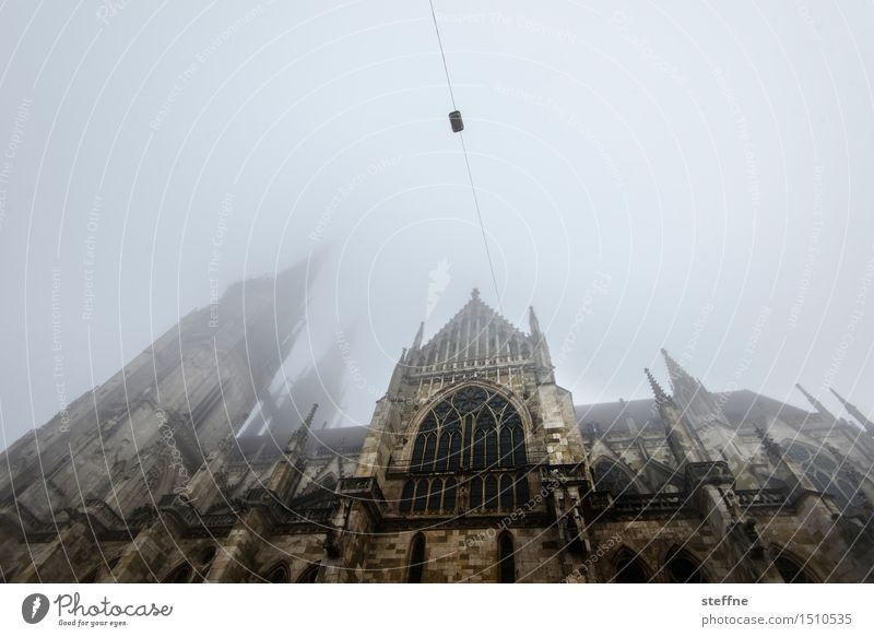 way to top II Sky Winter Bad weather Fog Regensburg Church Dome Religion and faith Facade Wide angle Colour photo Subdued colour Exterior shot Copy Space top