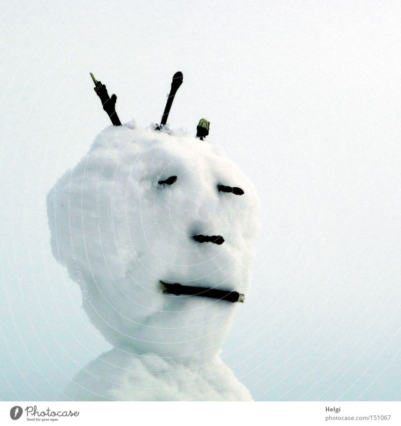Head of a snowman with face and hairstyle of twigs Subdued colour Exterior shot Neutral Background Day Portrait photograph Half-profile Joy Leisure and hobbies