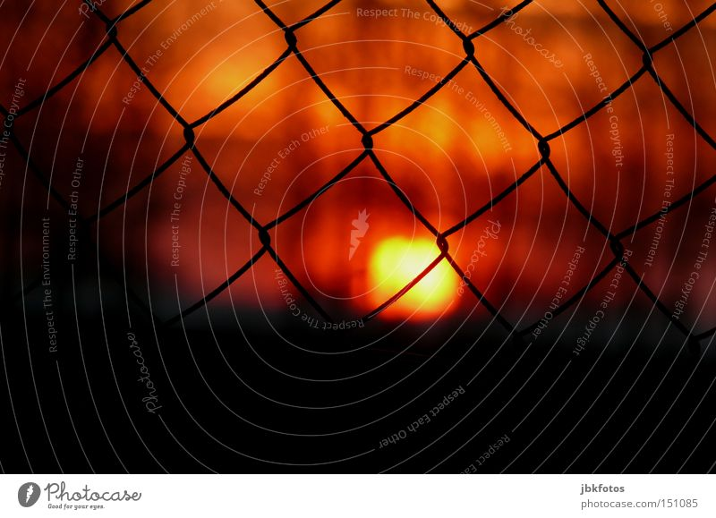 grid fence Wire netting fence Fence Sun Dark Black Red Sunset Romance Dusk Safety Vacation & Travel France Orange Detail