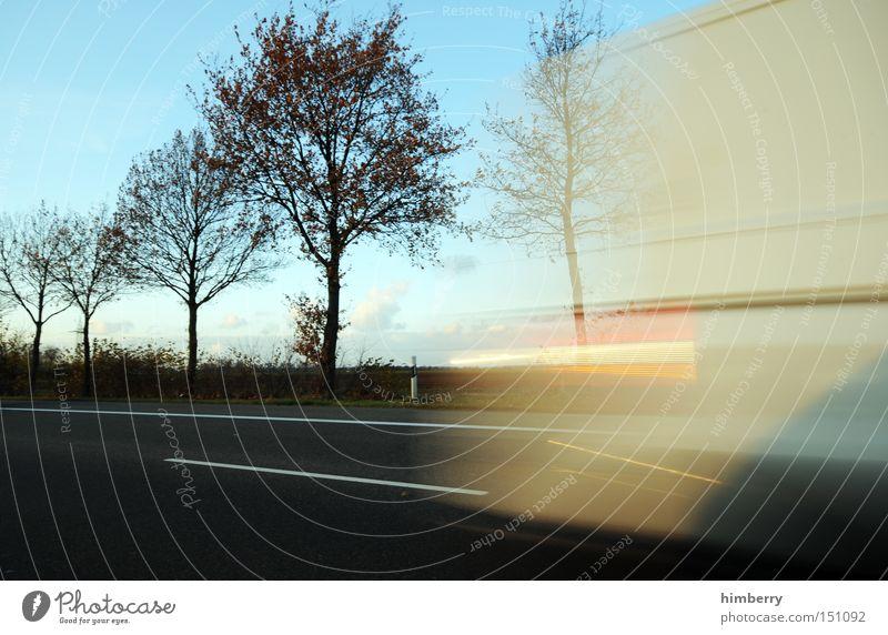 Tree Street Autumn Road traffic Transport Speed Logistics Truck Seasons Shipping Cargo Transporter