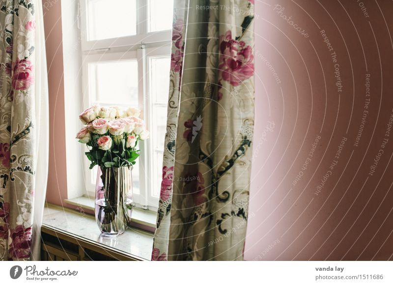 INTERIOR Lifestyle Shopping Luxury Style Living or residing Flat (apartment) Interior design Decoration Room Living room Design Vase Window Curtain Rose Bouquet