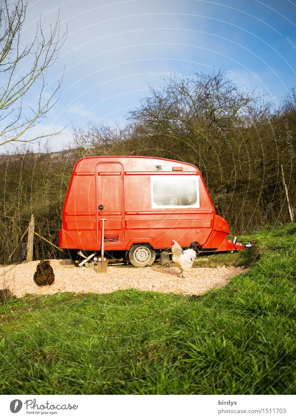 red mobile mini farm Lifestyle Living or residing Dream house Garden Nature Sky Autumn Winter Meadow Forest Caravan Barn fowl 2 Animal Spade Illuminate