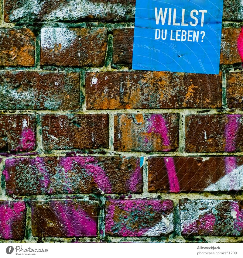 At a crossroads Assisted death Ask Wall (building) Wall (barrier) Brick Graffiti Transience Letters (alphabet) Characters price question