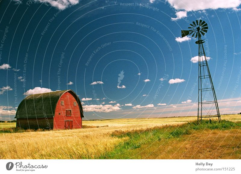 Nature Old Blue Red Summer Clouds Far-off places Yellow Grass Contentment Field Kitsch Silo Village Grain Wind energy plant