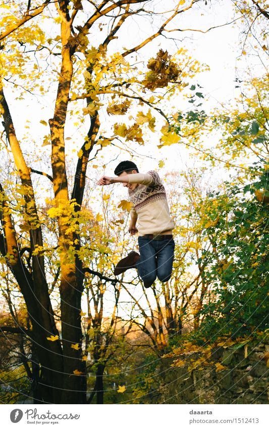 jump in the maple leaves Nature Vacation & Travel Youth (Young adults) Tree Young man Leaf Joy Life Emotions Autumn Style Playing Lifestyle
