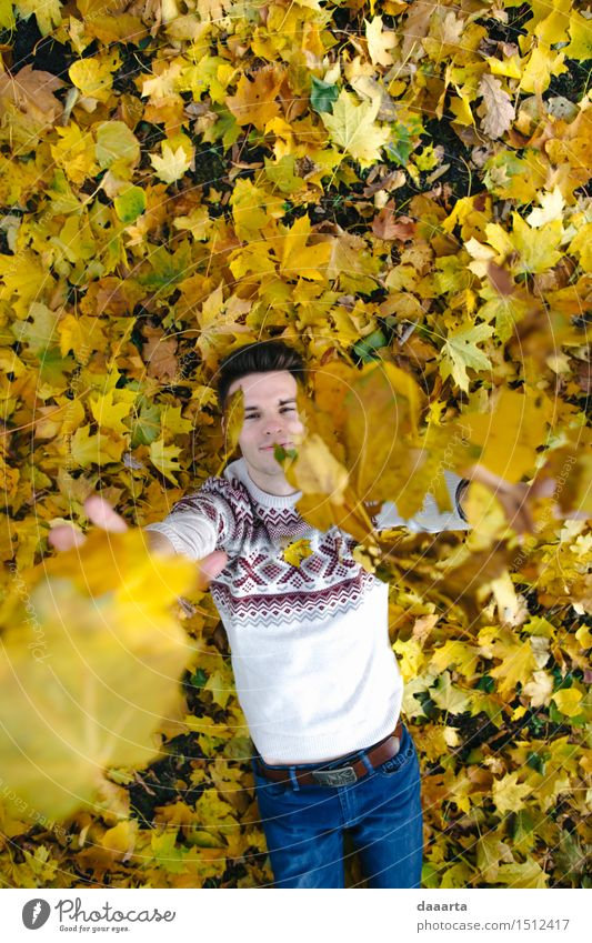 autumn game Nature Vacation & Travel Youth (Young adults) Young man Leaf Joy Life Emotions Style Lifestyle Garden Feasts & Celebrations Freedom Moody Design