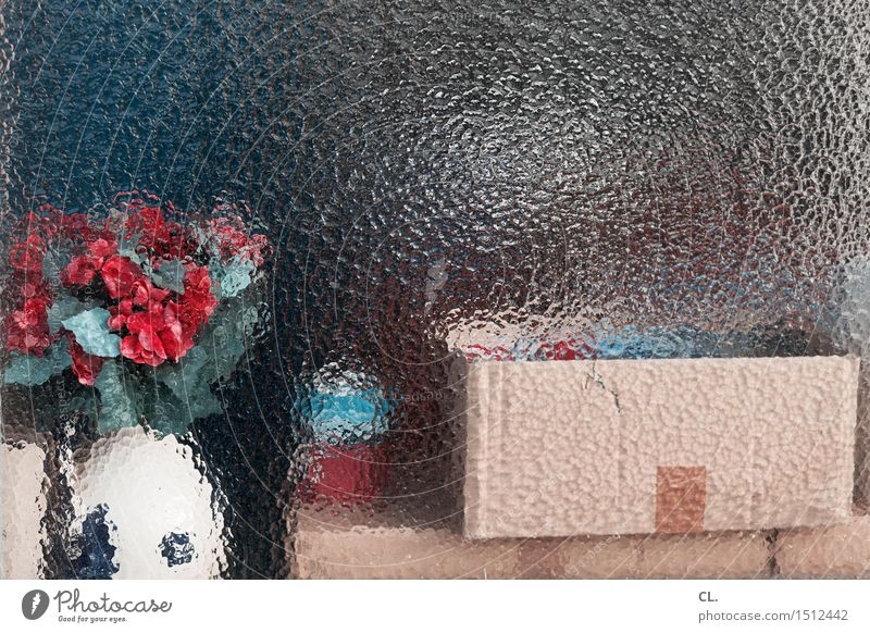 Behind glass Moving (to change residence) Arrange Decoration Flower Window Packaging Package Bowl Box Bouquet Flower vase Cardboard Glass Esthetic Colour photo