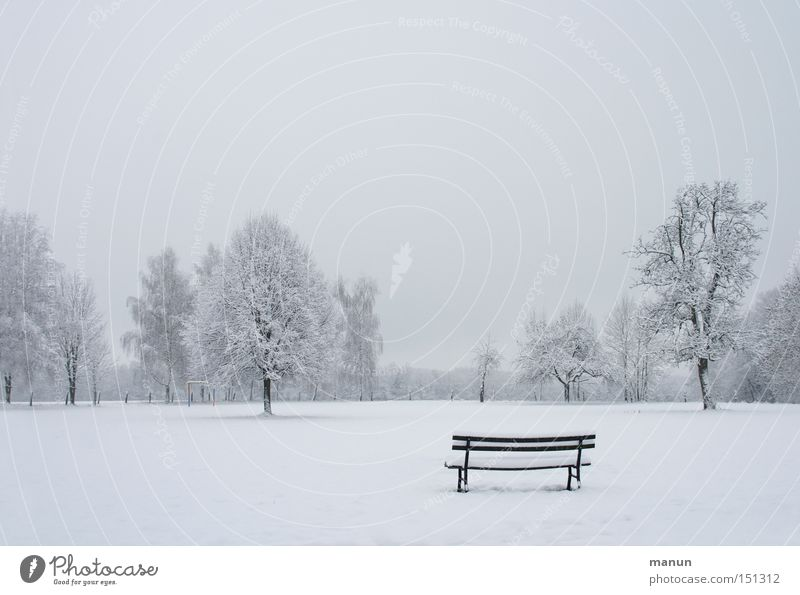 Sky Nature Tree Winter Calm Loneliness Far-off places Relaxation Cold Snow Landscape Garden Park Ice Fog Frost