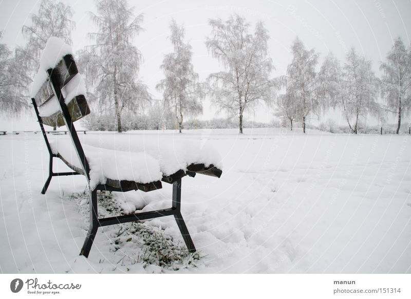 Nature Tree Winter Calm Loneliness Cold Snow Relaxation Park Ice Fog Empty Frost Break Bench Peace