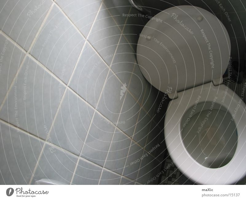 Living or residing Toilet Feces Urine Excretion