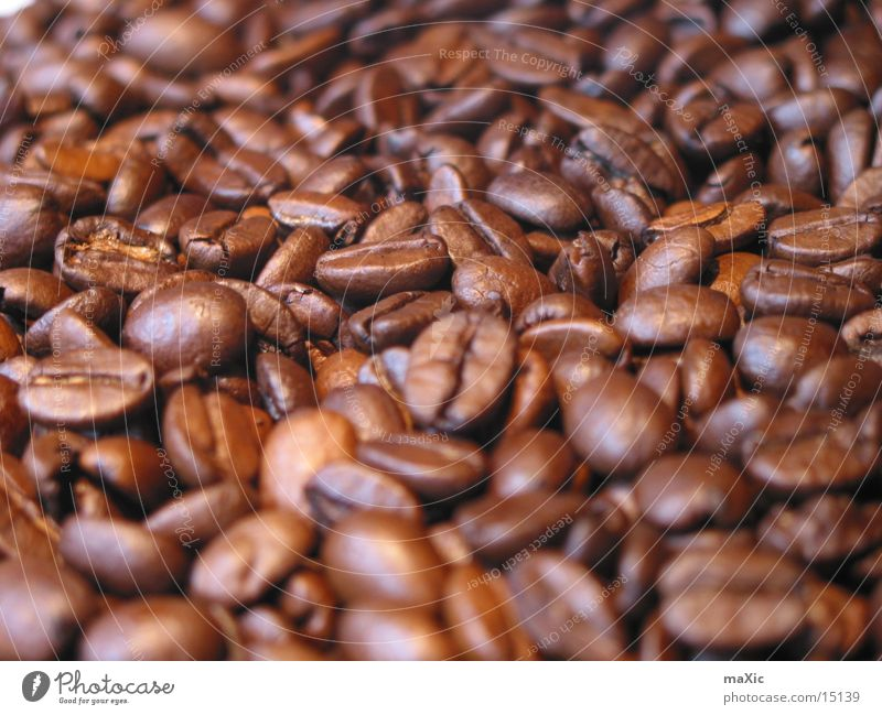 coffee beans Food Nutrition Coffee Espresso Harmonious To enjoy Delicious Near Brown Moody Beans Coffee bean Caffeine Bitter Colour photo Interior shot Close-up