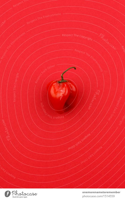Jammy chili pepper on red Art Work of art Esthetic Red Chili Chili harvest Husk Gaudy Tangy Aggression Pepper Delicious Spicy Design Fashioned Colour photo