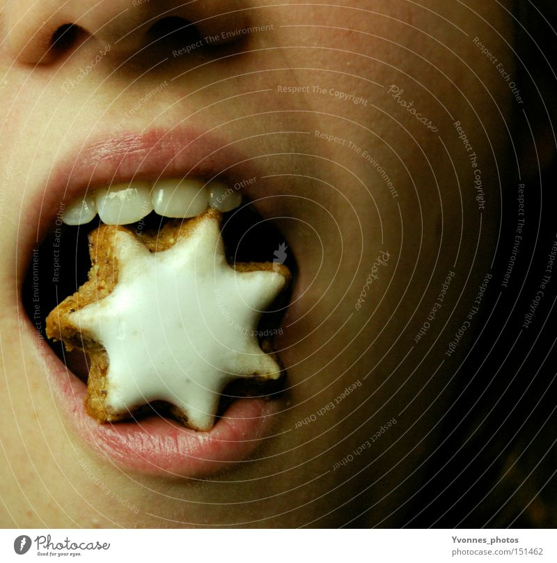 Christmas & Advent Eating Open Nutrition Mouth Sweet Star (Symbol) Teeth Delicious Lips Cookie Bite Prongs Christmas biscuit Star cinnamon biscuit