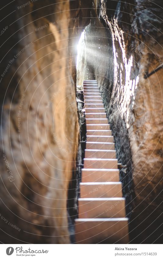 The stairs to the light Sunlight Beautiful weather Rock Mountain Stairs Observe Touch Discover Illuminate Bright Self-confident Optimism Safety