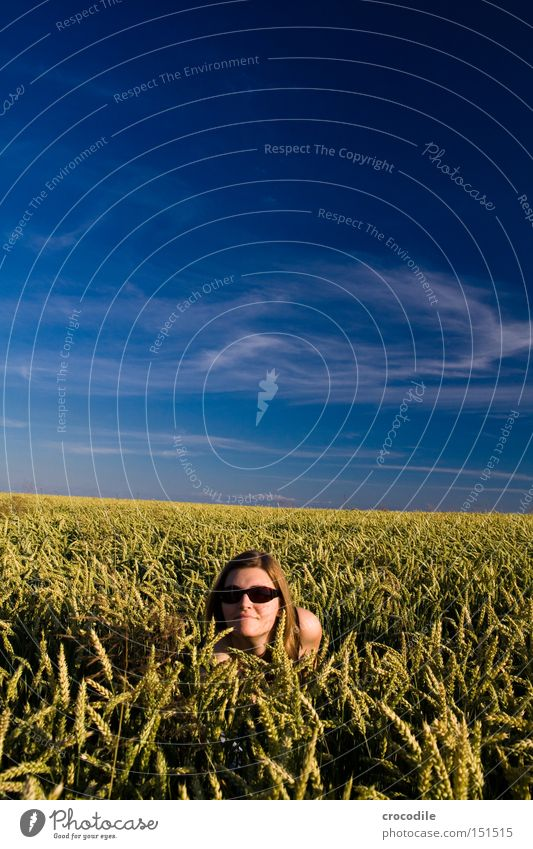 game of hide-and-seek Hide Wheat Field Woman Duck down Clouds Sky Sunglasses Head Hair and hairstyles Playing Pol-filter Summer Beautiful