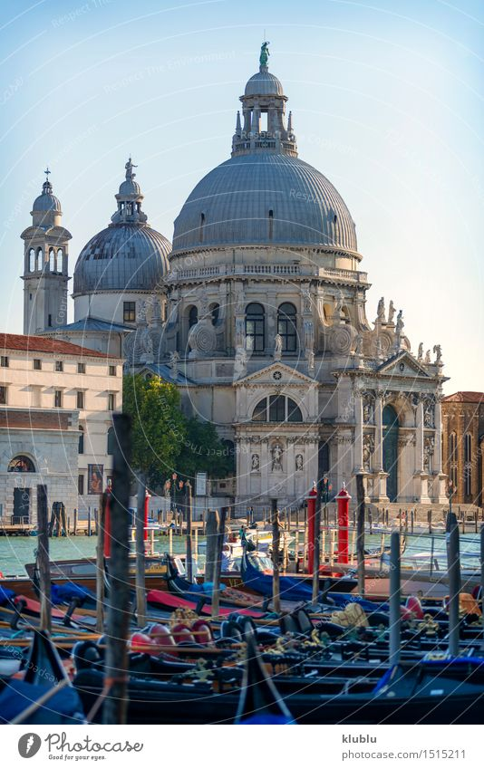 View of venice, Italy Ocean Island Small Town Church Building Architecture Facade Watercraft Bird Historic Maritime Religion and faith Vantage point eye