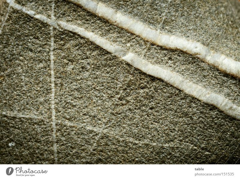 White Beach Gray Stone Line Anger Macro (Extreme close-up) Material Aggravation Hard Minerals Participation