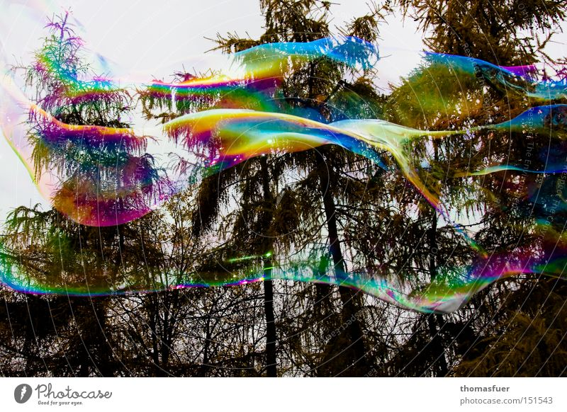 Joy Clouds Colour Happy Flying Aviation Soap bubble Hover Infatuation Fantasy Illusion Wishful thinking Bursting Think Desire Bubble