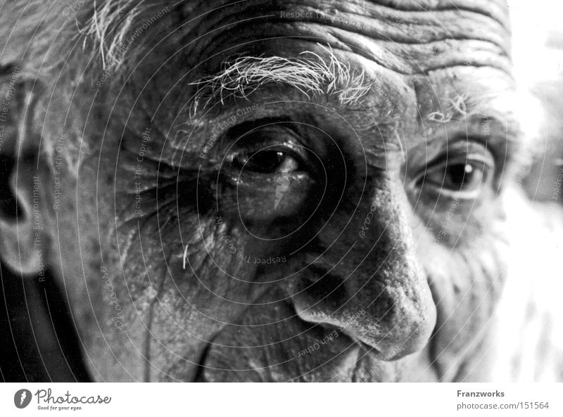 Man Old Senior citizen Human being Time Transience Wrinkle Fatigue Past Grandfather Retirement Generation Smart Wisdom Erudite Grandparents
