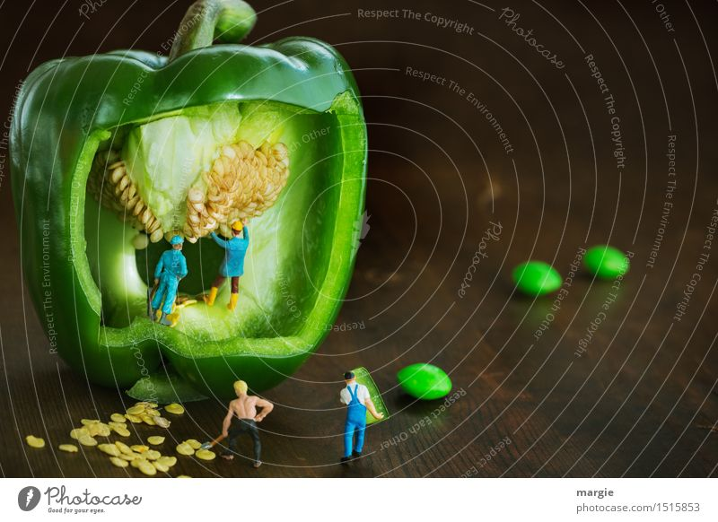 Mini - Worlds Green Paprika (Kernel) Harvest Vegetable Lettuce Salad Nutrition Organic produce Vegetarian diet Work and employment Profession Gardening