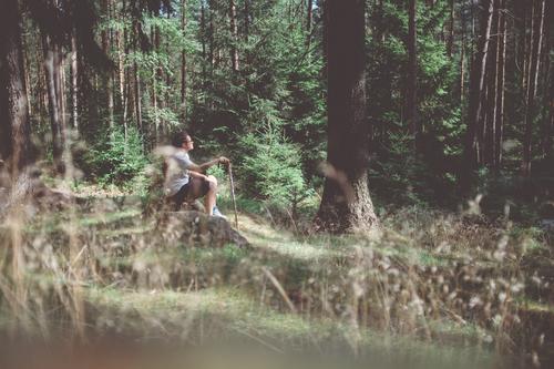 Wandermai(d) Leisure and hobbies Trip Adventure Freedom Hiking Human being Feminine Woman Adults Life 1 30 - 45 years Environment Nature Summer