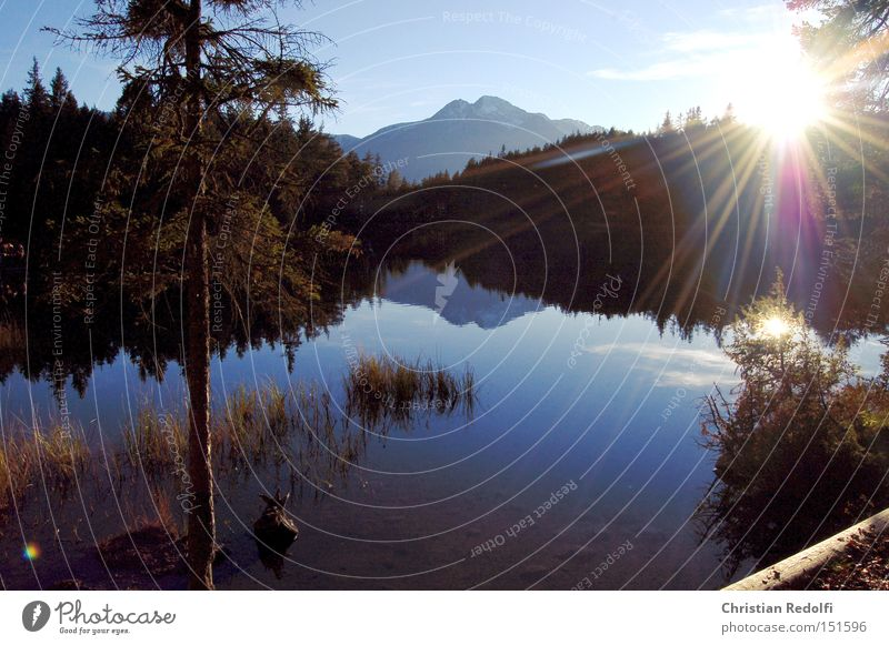 Nature Water Tree Sun Summer Calm Relaxation Landscape Autumn Coast Lake Swimming & Bathing Lakeside Footbridge River bank Pond