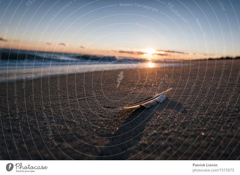 Federleicht Beautiful Vacation & Travel Adventure Freedom Sun Beach Ocean Waves Environment Nature Landscape Sand Sky Clouds Summer Climate Climate change