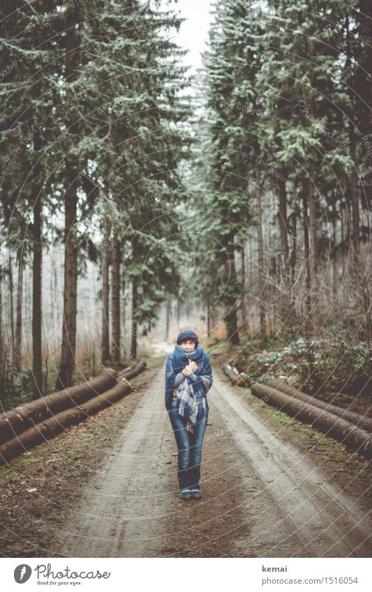 Human being Woman Nature Blue Tree Landscape Loneliness Winter Forest Adults Life Senior citizen Lanes & trails Feminine Style Lifestyle