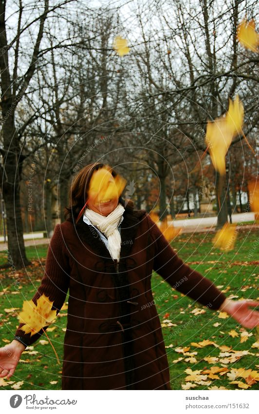 Mrs. Holle? Autumn Seasons Leaf Throw Tree Cold Scarf Coat Woman Joy Mother Holle To fall Movement Exterior shot