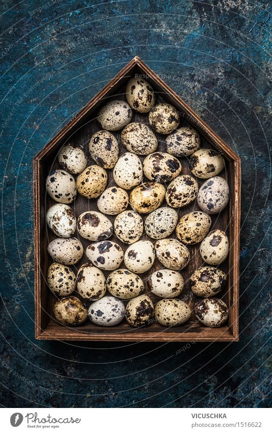 Quail eggs in rustic wooden box in house shape Food Style Design Healthy Eating Life Decoration Easter Nature Symbols and metaphors Egg Quail's egg Crate