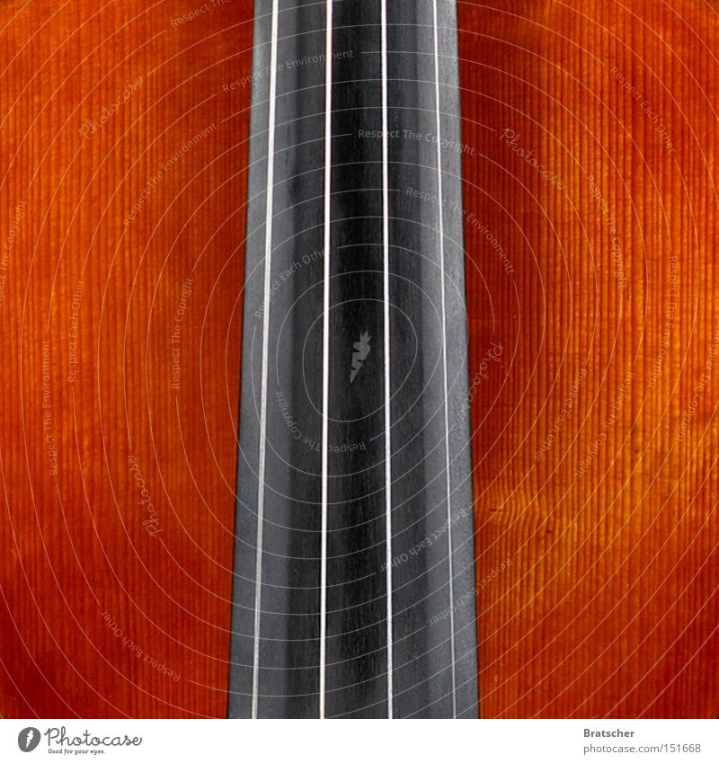 Composition IV Music Musical instrument Wood Precious Abstract Upward Tower Hotel Background picture Black Puzzle Quality