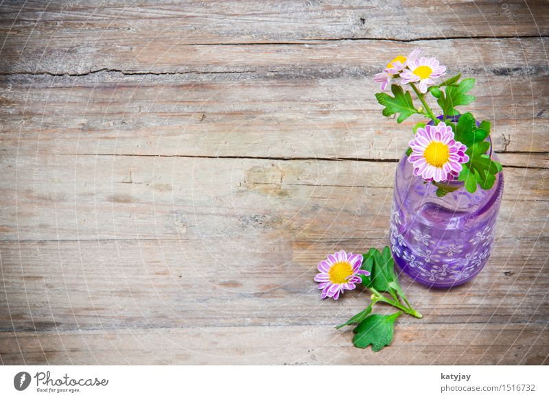 Flowers in vase Mother's Day Valentine's Day Wood Table Wooden table Marguerite Daisy Pink Romance Gift Credit Donate Love Background picture Vase Violet
