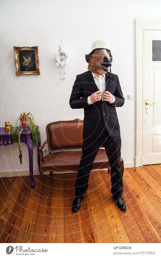 LP. HORSEMAN. XX Event Going out Carnival Hallowe'en Man Adults 1 Human being Fashion Protective clothing Suit Helmet Horse Animal Retro Town Bizarre Elegant