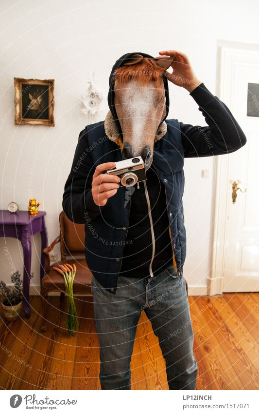 Human being Man Animal Adults Interior design Think Party Flat (apartment) Masculine Wild Living or residing Decoration Stand Crazy Retro Horse