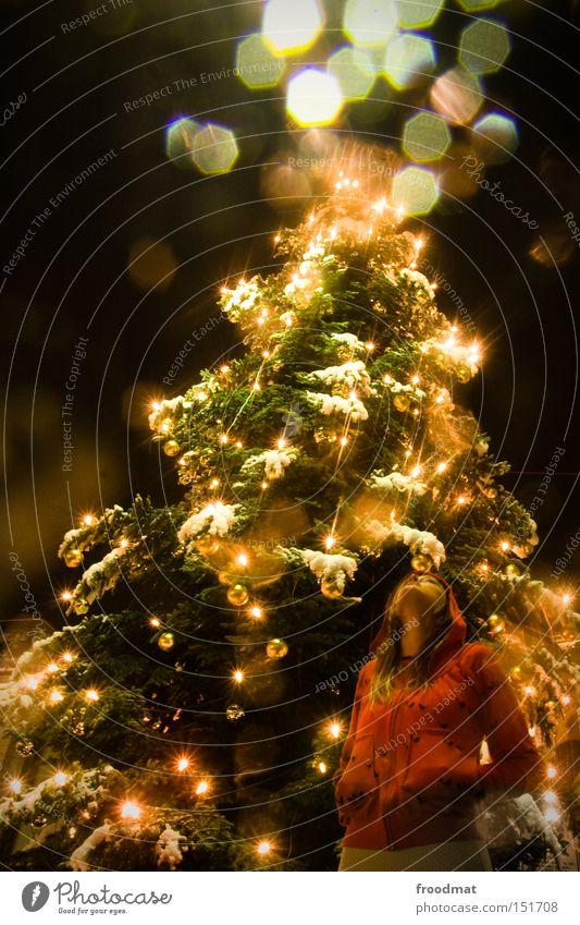 Woman Christmas & Advent Tree Beautiful Winter Snow Lighting Gold Human being Night Christmas decoration Christmas tree Fairy tale Fairy lights