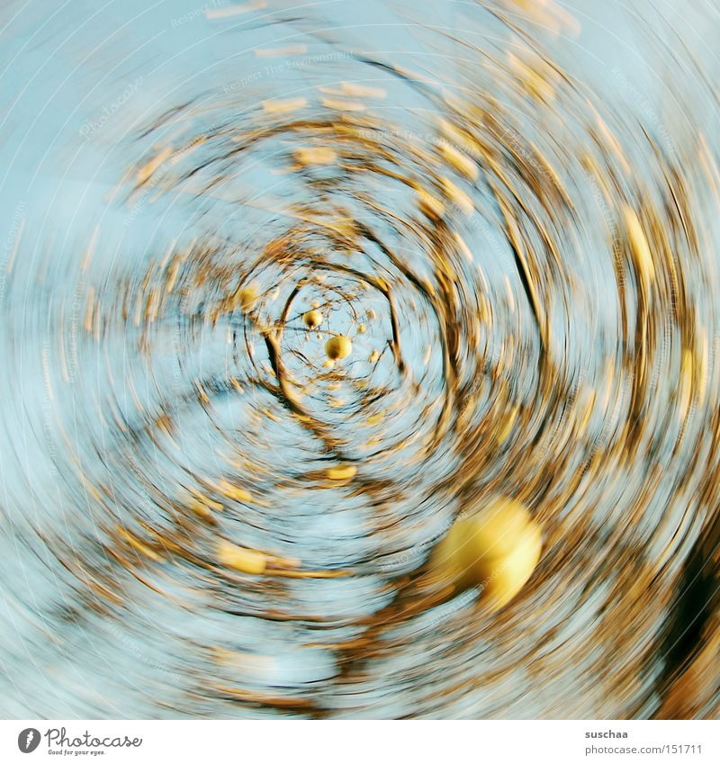 apple strudel Apple tree Branch Tree Sky Whirlpool Round Rotation Motion blur Swirl Movement