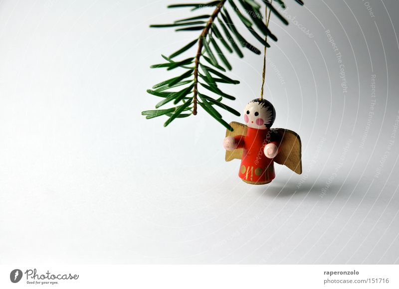Lonely Angel Decoration Wing Grief Loneliness Distress Fir branch Wooden figure Fir needle Colour photo Subdued colour Neutral Background Close-up 1 Suspended