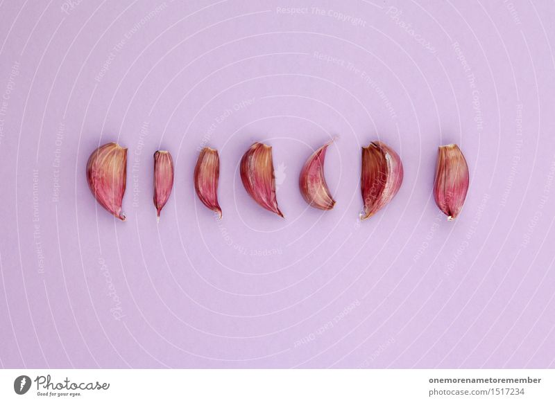 Healthy Eating Food photograph Art Design Esthetic Cooking & Baking Kitchen Violet Delicious Organic produce Row Work of art Symmetry Spicy Garlic