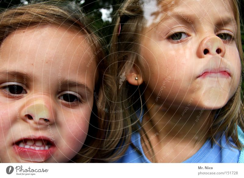 double pack Socket Absurdity Window pane Face Grimace Window cleaner Girl Pane Couple 2 Child Joy Amazed Nose miss piggy In pairs
