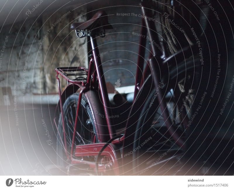Old bicycle in dark shed Wheel Leisure and hobbies Vacation & Travel Tourism Trip Adventure Cycling tour Decoration Time machine Advancement Future