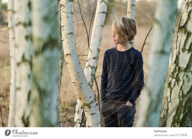At the edge of the forest Human being Child Boy (child) Infancy Life Head Hair and hairstyles Face 1 Stand Birch wood Tree bark Forest Colour photo