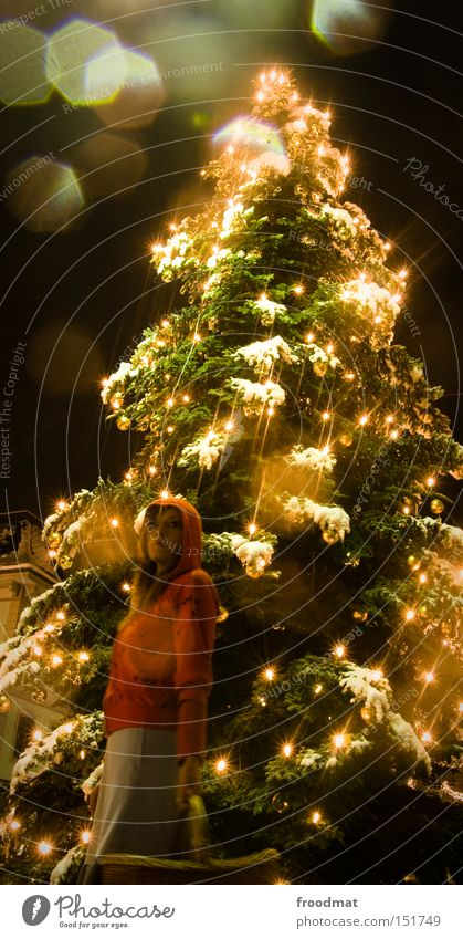 Woman Christmas & Advent Tree Beautiful Winter Snow Lighting Gold Christmas tree Fairy tale Fairy lights Little Red Riding Hood Event lighting