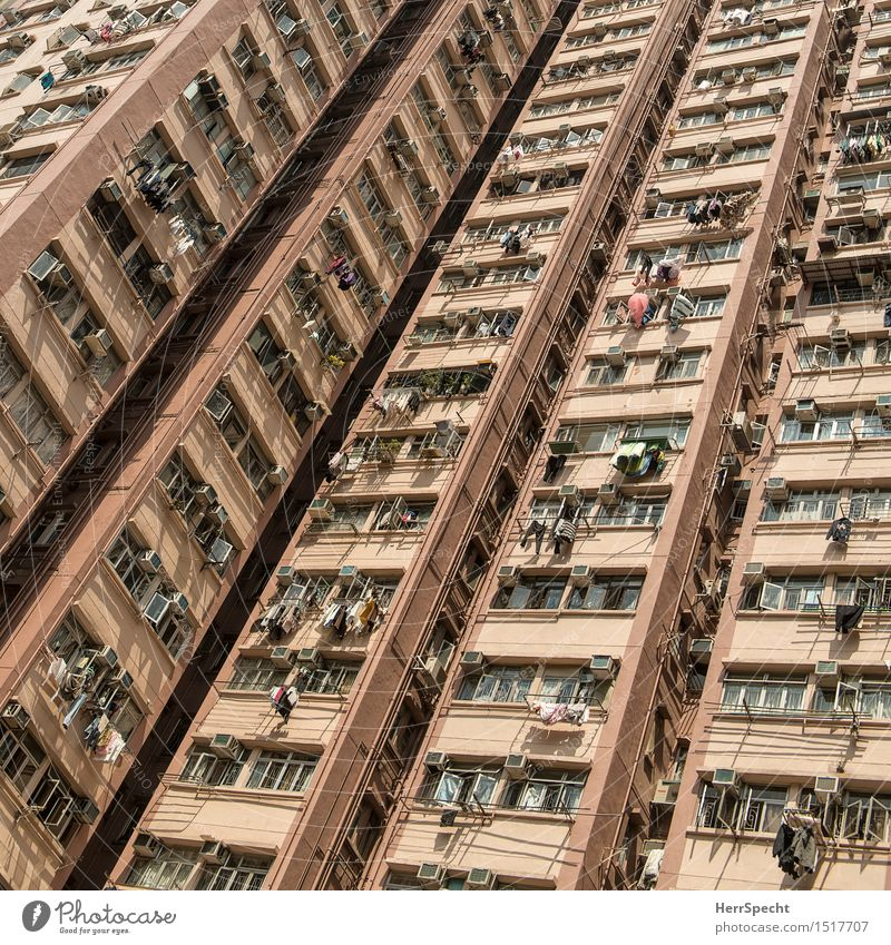 cage posture Living or residing Hongkong Downtown Skyline Manmade structures Building Architecture Facade Window Exotic Tall Gloomy Town Many Tower block
