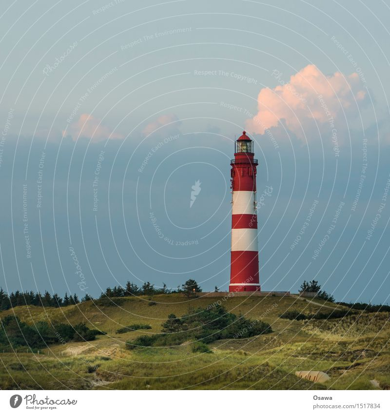 Sky Nature Vacation & Travel Plant Blue Summer Green Landscape Clouds Environment Summer vacation Beach dune North Sea Lighthouse Amrum Heather family